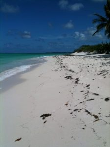 Cow Wreck Beach, Anegada on a beautiful October day